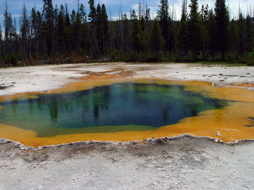 Hot spring at Yellowstone National Park -- colors from bacterial living at different temperatures and pH's